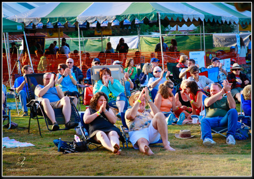 bothell-blues-festival-2011-crowds